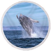 Humpback Breaching - 02 Round Beach Towel