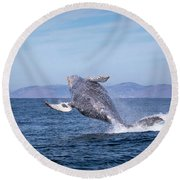 Humpback Breaching - 03 Round Beach Towel