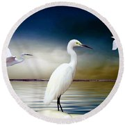 Ibis Round Beach Towel
