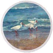 Ibis Trio - Ibis On The Beach Round Beach Towel