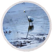 Intermediate Egret At Lake Pat Round Beach Towel