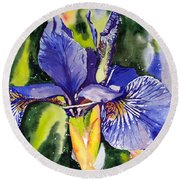 Iris In Bloom Round Beach Towel