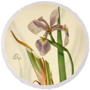 Iris Versicolor Blue Flag Round Beach Towel