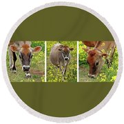 Jersey Fields Of Gold Round Beach Towel