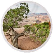 Juniper Over The Canyon Round Beach Towel
