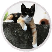 Just Chillin Tricolor Cat Round Beach Towel