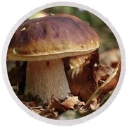 King Boletus - Edible Mushroom Round Beach Towel