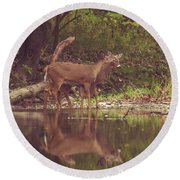 Round Beach Towel featuring the photograph Kissing Deer Reflection by Dan Sproul