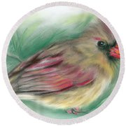 Lady Cardinal In The Pine Round Beach Towel