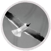 Laughing Seagull Round Beach Towel