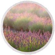 Lavender Field In Fog Round Beach Towel