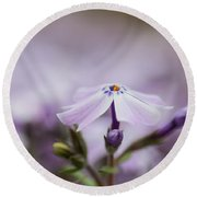 Lavender Reverie Round Beach Towel