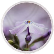 Round Beach Towel featuring the photograph Lavender Reverie by Emily Johnson