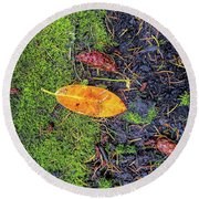 Round Beach Towel featuring the photograph Leaf And Mossy by Jon Burch Photography