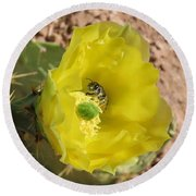 Leaf-cutter Bee Bathing In Gold Round Beach Towel