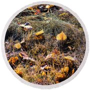 Round Beach Towel featuring the photograph Leaves Of Grass by Jon Burch Photography