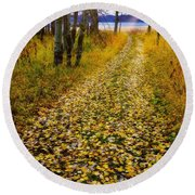 Leaves On Trail Round Beach Towel