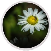 Life Is A Flower Round Beach Towel