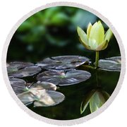 Lily In The Pond Round Beach Towel