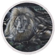 Lion In Dappled Shade Round Beach Towel