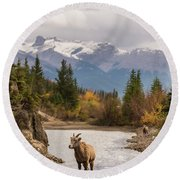 Little Bighorn Round Beach Towel