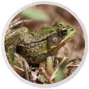 Little Green Frog Round Beach Towel