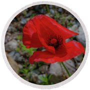 Lone Red Flower Round Beach Towel