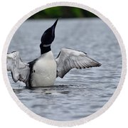 Loon Shaking Off Round Beach Towel