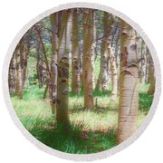 Round Beach Towel featuring the photograph Lost In The Woods - Kenosha Pass, Colorado by Mike Braun