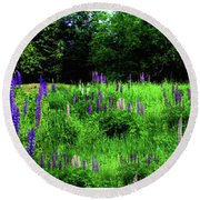 Round Beach Towel featuring the photograph Lupine Panorama by Wayne King