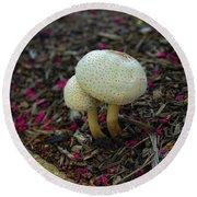 Magical Mushrooms Round Beach Towel