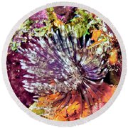 Magnificent Feather Duster Round Beach Towel