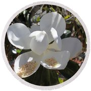 Magnificent Magnolia Round Beach Towel