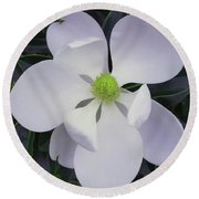 Round Beach Towel featuring the painting Magnolia Flower Photo F9718 by Mas Art Studio