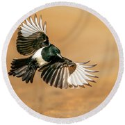 Magpie Beauty Round Beach Towel