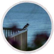 Magpie Bird Round Beach Towel