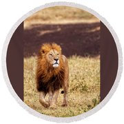 Round Beach Towel featuring the photograph Majesty by Kay Brewer