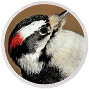 Male Downy Woodpecker Round Beach Towel