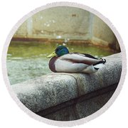 Mallard Resting On The Fountain Of The Fallen Angel In The Retiro Park - Madrid, Spain Round Beach Towel