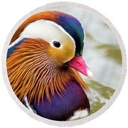 Mandarin Duck Portrait Round Beach Towel