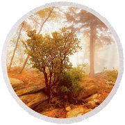 Manzanita In Light Round Beach Towel