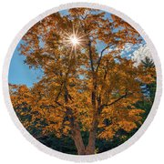 Round Beach Towel featuring the photograph Maple Tree In Full Autumn Glory by Rick Berk