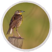 Round Beach Towel featuring the photograph Meadowlark On Post by Tom Claud