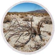 Mesquite In The Desert Sun Round Beach Towel