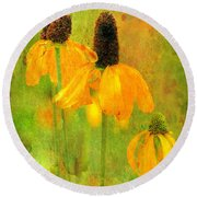 Mexican Hat Sunflower Collection  Round Beach Towel