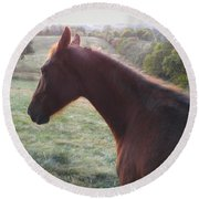 Round Beach Towel featuring the photograph Misty by Carl Young