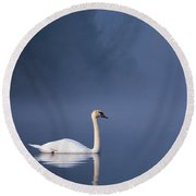 Round Beach Towel featuring the photograph Misty River Swan 2 by Davor Zerjav