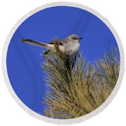 Mockingbird In White Pine Round Beach Towel