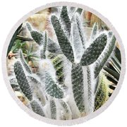 Mojave Prickly Pear Round Beach Towel