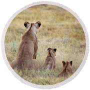 Mom And Cubs Round Beach Towel